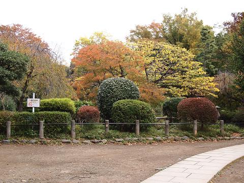 港区南麻布3丁目 戸建 周辺 有栖川宮記念公園