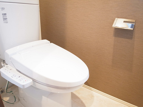 品川区西中延1丁目 戸建て 3階 トイレ