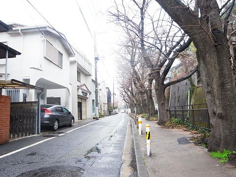 大田区田園調布5丁目 戸建 周辺