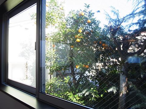 豊島区巣鴨4丁目 戸建 洋室1  窓