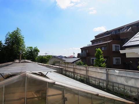 世田谷区玉堤1丁目5号棟 洋室3  眺望