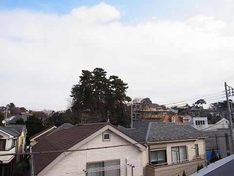 世田谷区等々力2丁目A号棟 戸建 ルーフバルコニー 眺望