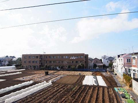 世田谷区千歳台2丁目1号棟 戸建 洋室3 眺望