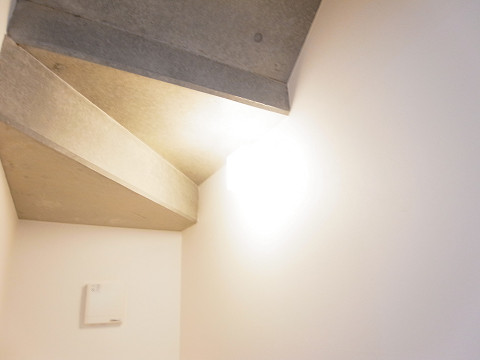 大田区上池台1丁目 戸建 トイレ1