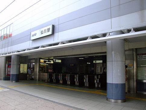 sengawa-2-3